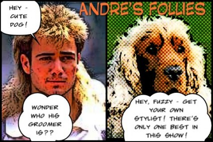 Andre's Follies